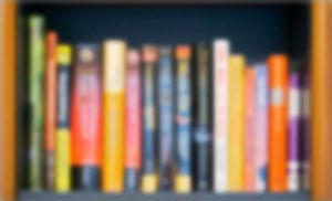 Bookshelf-on-3-31-2007