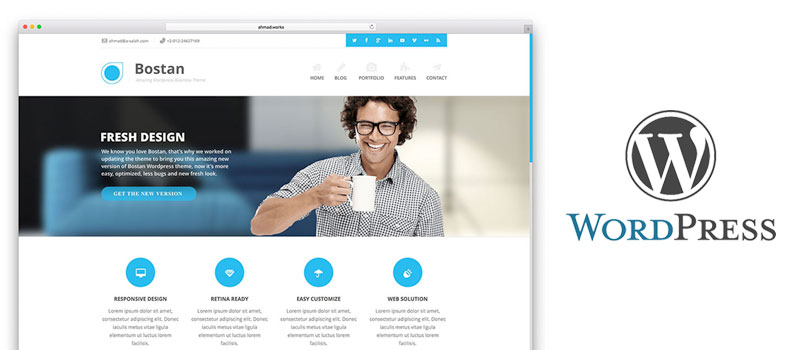 wordpress-designer